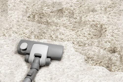 Can Carpet Hot Water Extraction Remove Bad Smell?
