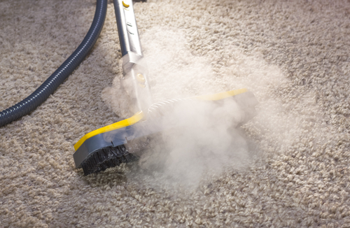 Carpet Shampooing Vs Carpet Hot Water Extraction