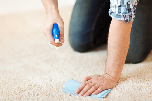 Removing carpet stain