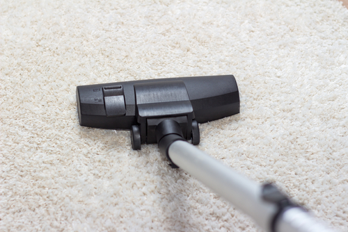 Why Choose Eco Friendly Carpet Cleaning