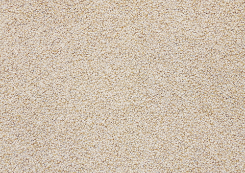 Carpet Steaming Vs Dry Carpet Cleaning