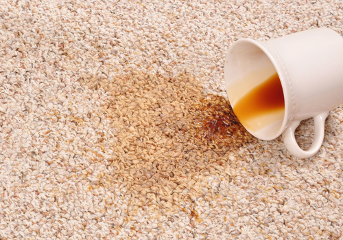 Can Carpet Stain Really Be 100% Removed?