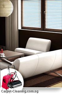 Clean Carpet in Home