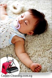 Clean & Soft Carpet
