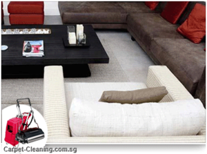 Condo Carpet Cleaning