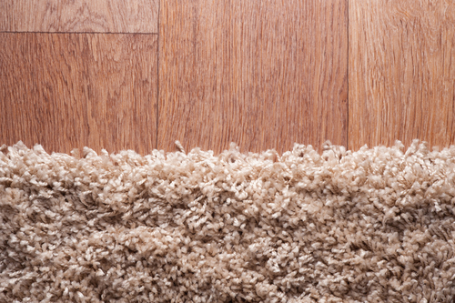 How To Remove Musty Smell From Rug?