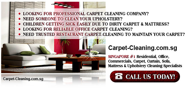 Looking for Professional Carpet Cleaning Company? Need Someone to Clean Your Upholstery? Children Getting Sick Easily Due To Dirty Carpet & Mattress? Looking For Reliable Office Carpet Cleaning? Need Trusted Restaurant Carpet cleaning To Maintain Your Carpet?