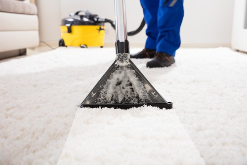 how-carpet-cleaning-reduce-germs-and-viruses