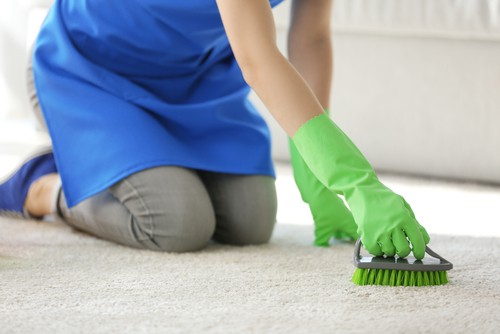 Cleaning carpet brush