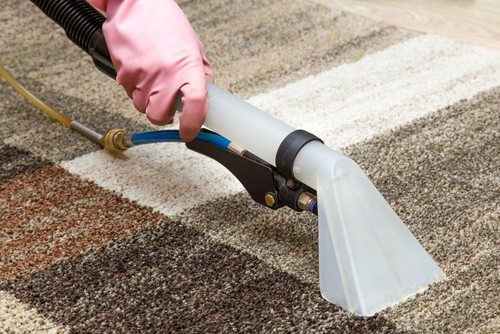 Steam and rinse carpet