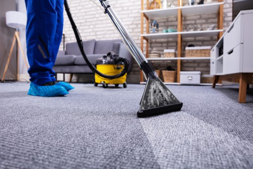 Can Carpet Cleaning Remove Pet Hair?