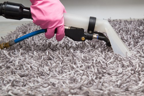 What Is The Safest Carpet Cleaning Method?