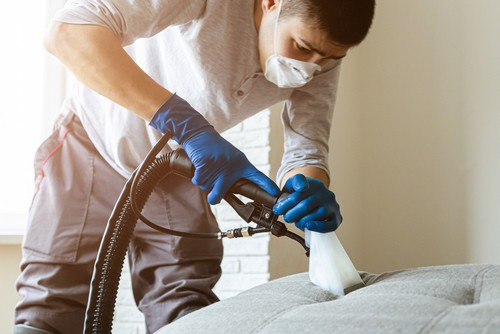 How Often Should Upholstery Be Cleaned?