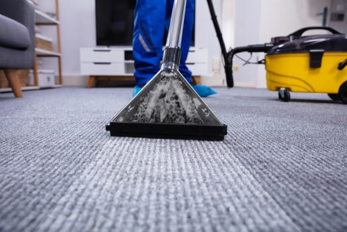 What Do Professionals Use To Clean Carpet?